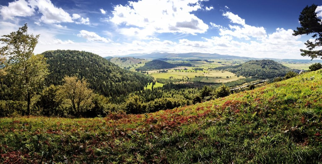 View from the top of the Puy Vichatel ©A.Sauvanot